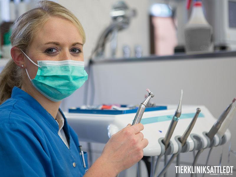 دندانپزشکی-1